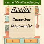 Cucumber Mayonnaise Recipe