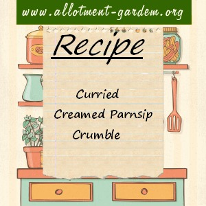 curried creamed parsnip crumble