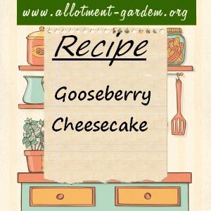 gooseberry cheesecake