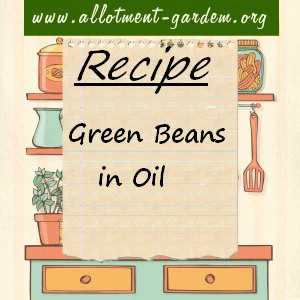 green beans in oil