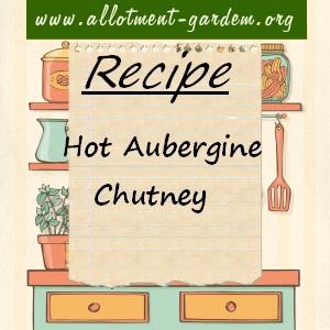 hot aubergine chutney