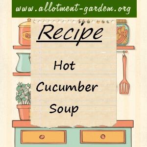 hot cucumber soup