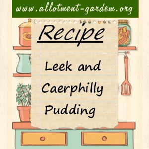 leek and caerphilly pudding