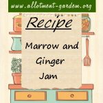 Marrow and Ginger Jam Recipe