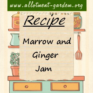 marrow and ginger jam
