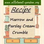 Marrow and Parsley Cream Crumble Recipe