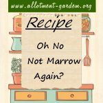 Oh No, Not Marrow Again? Recipe