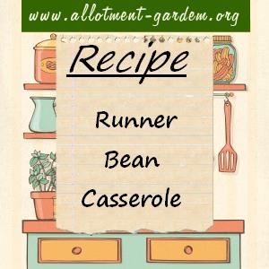 runner bean casserole