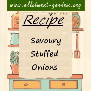 savoury stuffed onions