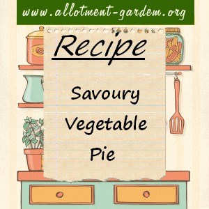 savoury vegetable pie