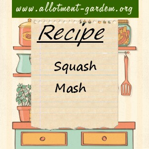 squash mash