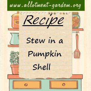 stew in a pumpkin shell