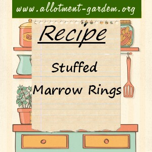 stuffed marrow rings