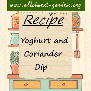 yoghurt and coriander dip