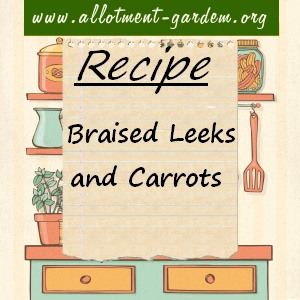 braised leeks and carrots