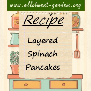 layered spinach pancakes