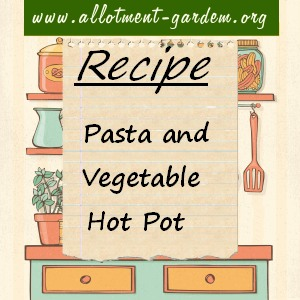 pasta and vegetable hot pot