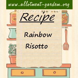 rainbow risotto