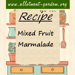 mixed fruit marmalade