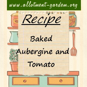 baked aubergine and tomato