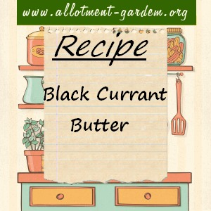 black currant butter