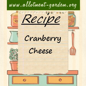 cranberry cheese