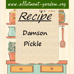 damson pickle