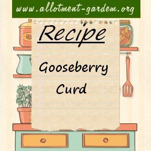 gooseberry curd