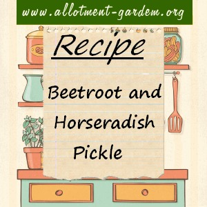 beetroot and horseradish pickle