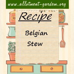 belgian stew