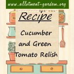 Cucumber and Green Tomato Relish Recipe