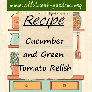 cucumber and green tomato relish