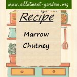 Marrow Chutney Recipe