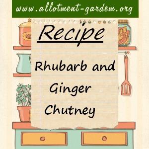 rhubarb and ginger chutney