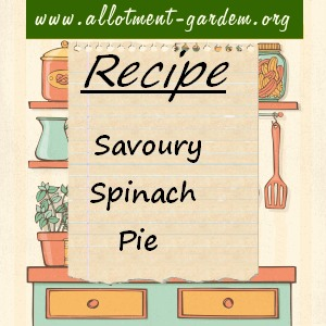 savoury spinach pie