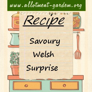 savoury welsh surprise