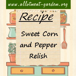 sweet corn and pepper relish