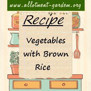 vegetables with brown rice