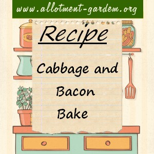 cabbage and bacon bake