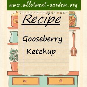 gooseberry ketchup