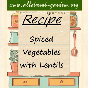 spiced vegetables with lentils