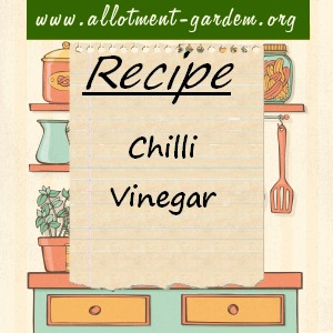 chilli vinegar
