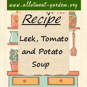 leek, tomato and potato soup