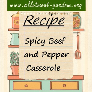 spcy beef and pepper casserole
