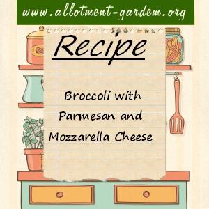 broccoli with parmesan