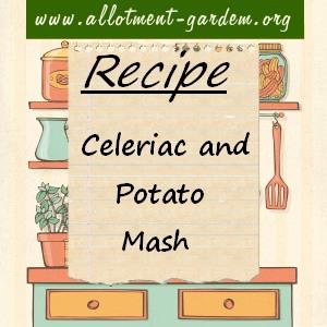 celeriac and potato mash