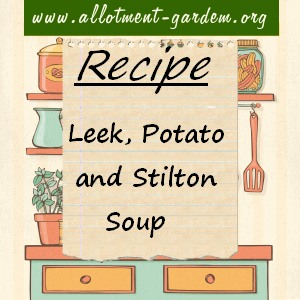 leek, potato and stilton soup