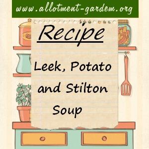 leek, potato and stilton soup