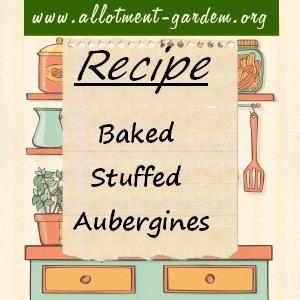 baked stuffed aubergines