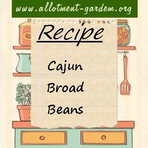 cajun broad beans